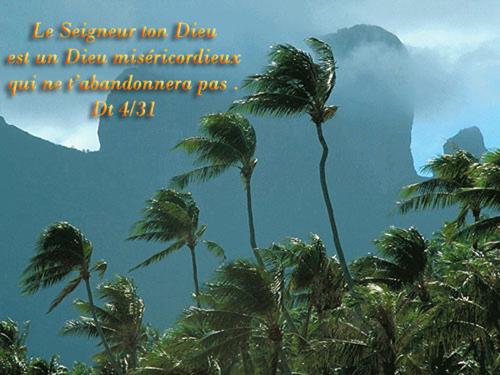 deuteronome-4-bis-jpg Le seigneur ne t'abandonnera pas