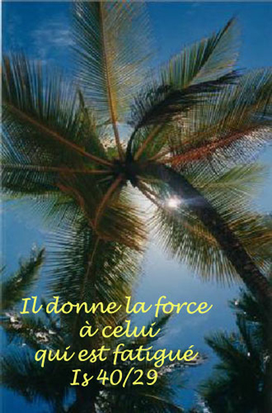 isaie-40-jpg Il donnera force ...;