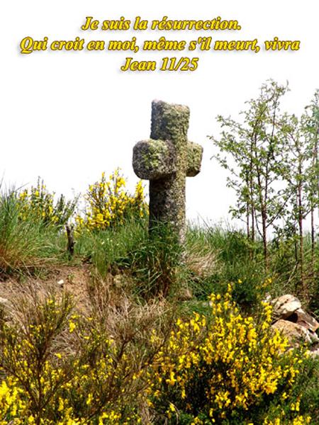 Jean-11 Je suis la résurrection...