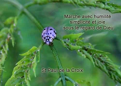 St-Paul-de-la-Croix-Marche avec humilité