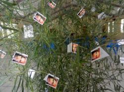 deco-arbre-1.jpg