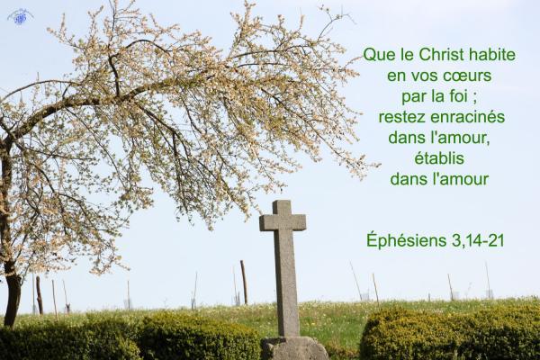 Ephesiens 3 14 21aw 1