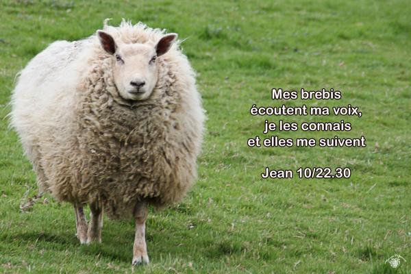 Jean 10 22 30aw