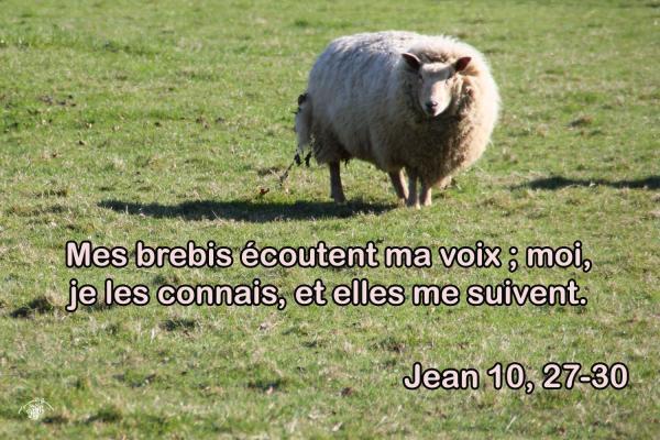 Jean 10 27 30aw