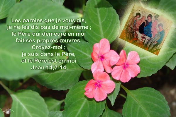 Jean 14 7 14aw