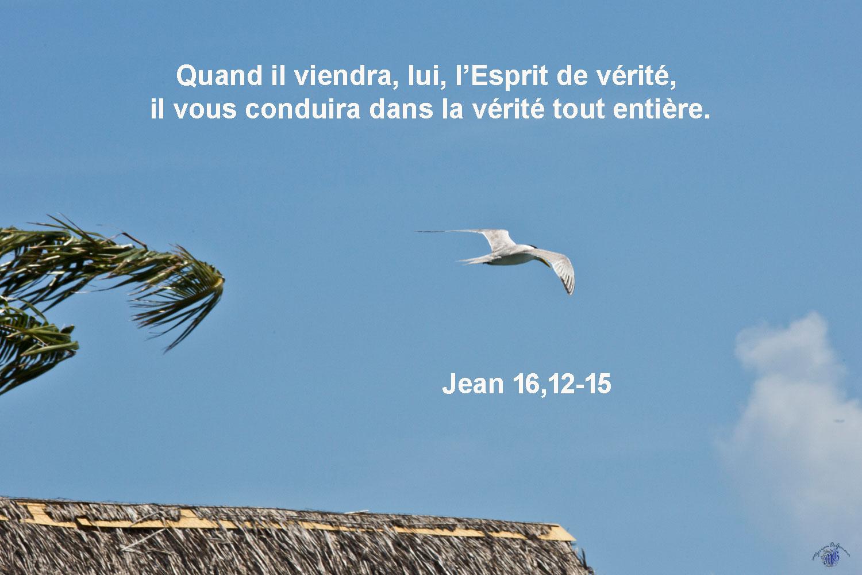 Commentaire de Jean 16,12-15