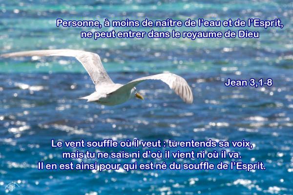 Jean 3 1 8aw