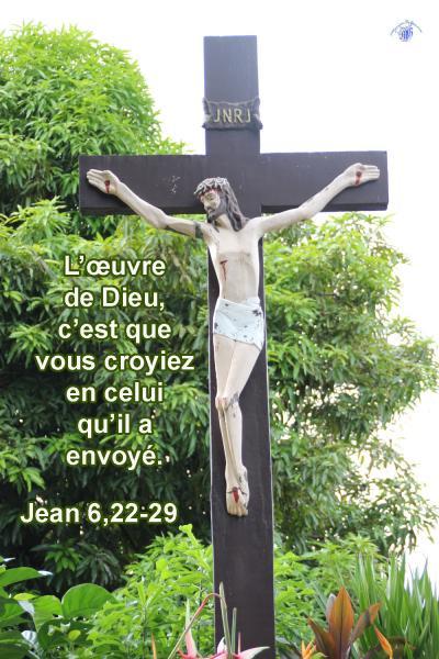 Jean 6 22 29aw