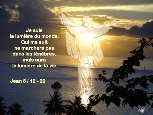Jean 8 12 20aw