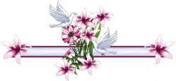 ligne-fleur.jpg