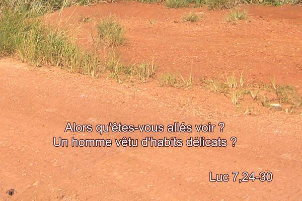 Luc 7 24 30aw