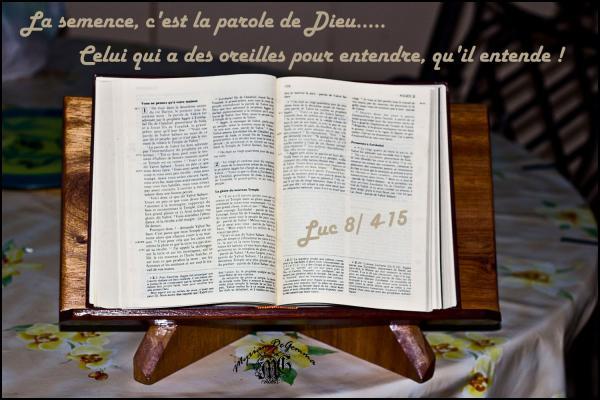 Luc 8 4 15