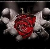 mains-rose.jpg