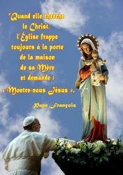 Papefrancoismarie wb