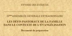 Synode sur la famille document