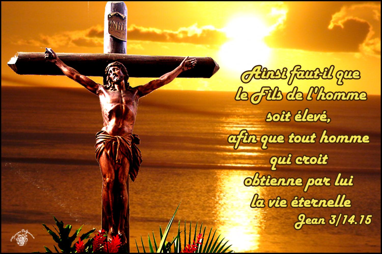 Evangile du jour du 14.09.2020 – Centre Romand de l'Apostolat Mondial de  Fatima