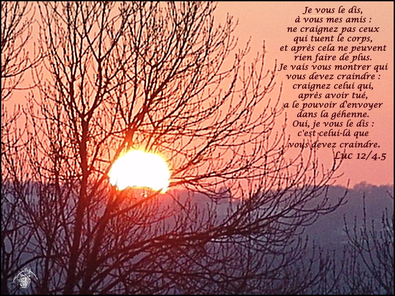 Commentaire de Luc 12,1-7.