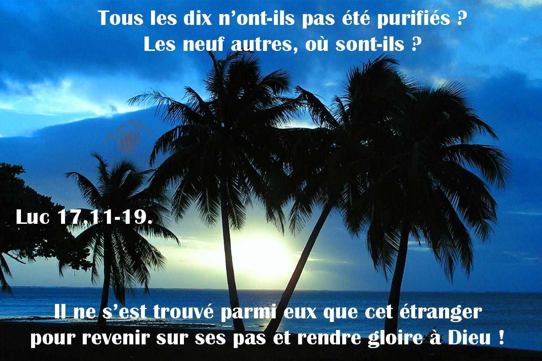 Commentaire de Luc 17,11-19.
