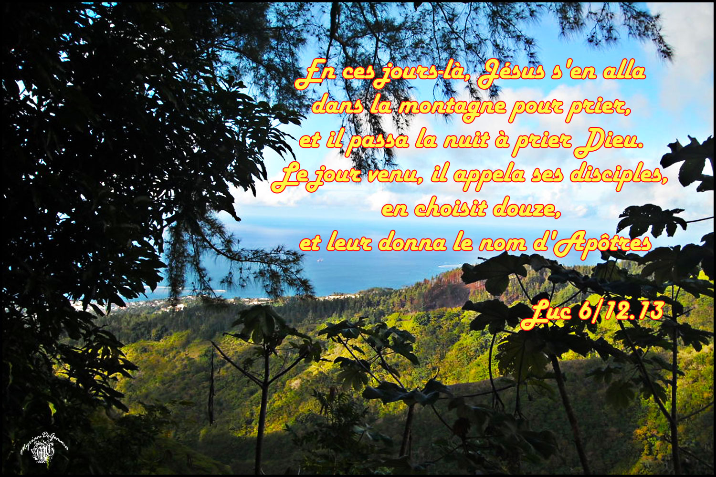 Commentaire de Luc 6,12-19