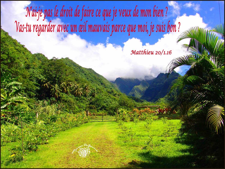 Commentaire de Matthieu 20,1-16