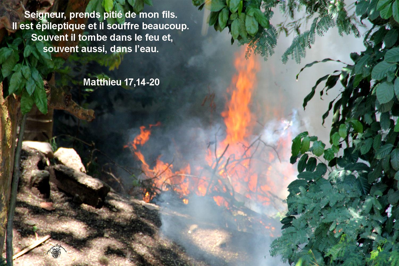 Commentaire de Matthieu 17,14-20