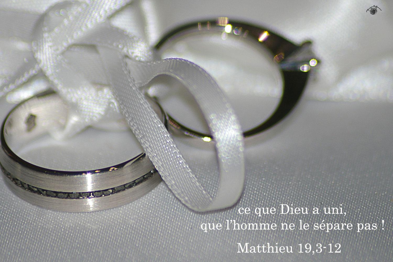 Commentaire de Matthieu 19,3-12